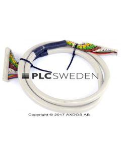 Phoenix E132956 (E132956)